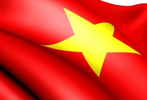 vietnam-insights-flag